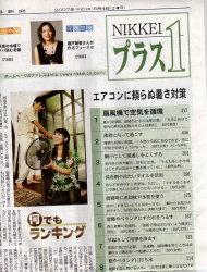 nikei_1_01_2007_08.jpg